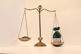 Mariendistelfrüchte 500 g