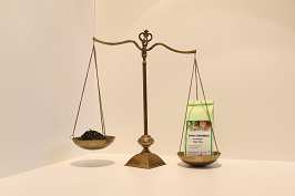 Grüner Tee sw. Johannisbeere 100 g