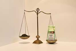 Grüner Tee Vanille 100 g