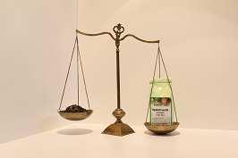 Grüner Tee Waldfrucht 250 g