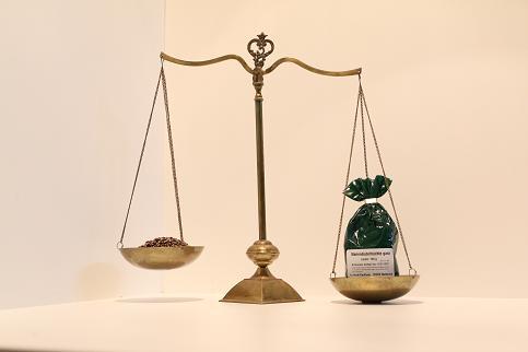 Mariendistelfrüchte 150 g