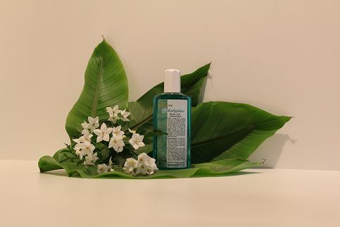 Eukalyptus Dusch/Badelotion 200 ml