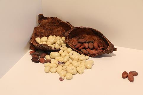 Cashew Nüsse in Zartbitterschokolade 200 g