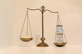 Feinwürzmittel (35% Salz) 500 g