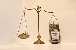 Hirtentäschelkraut 100 g