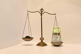 Grüner Tee Earl Grey 100 g