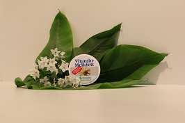 Vitamin Melkfett mit Kamillenwirkstoff 100 ml